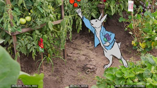 Animal logic peter rabbit12